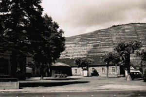 Der Winzerverein